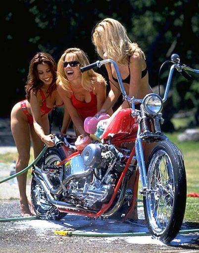 Biker Babes I Love Harley Davidson Bikes